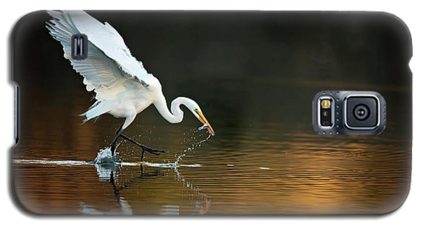 Egret At Sunset Galaxy S5 Case