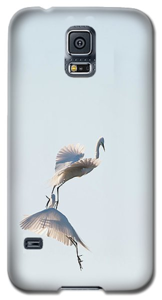 Egret Dance 2 Galaxy S5 Case by Catherine Lau