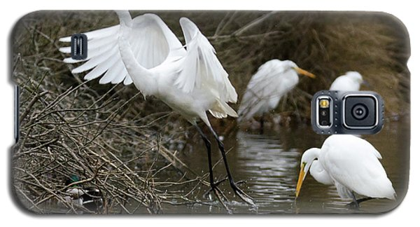 Galaxy S5 Case featuring the photograph Egret Exit by George Randy Bass