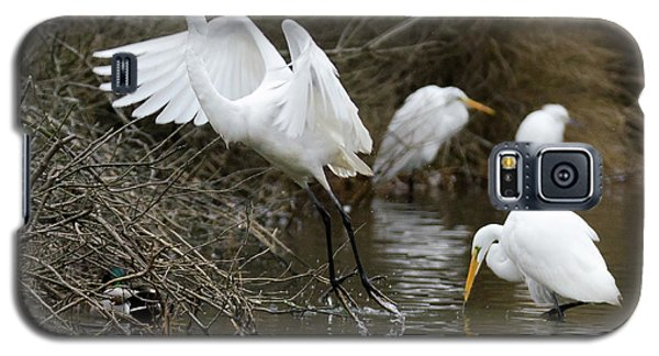 Egret Exit Galaxy S5 Case by George Randy Bass