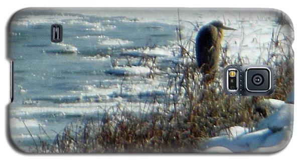 Egret Frozen Lake Galaxy S5 Case