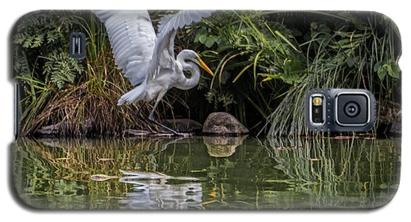 Egret Hunting For Lunch Galaxy S5 Case
