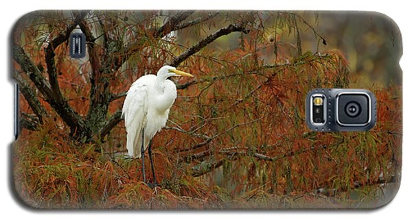 Egret In Autumn Galaxy S5 Case