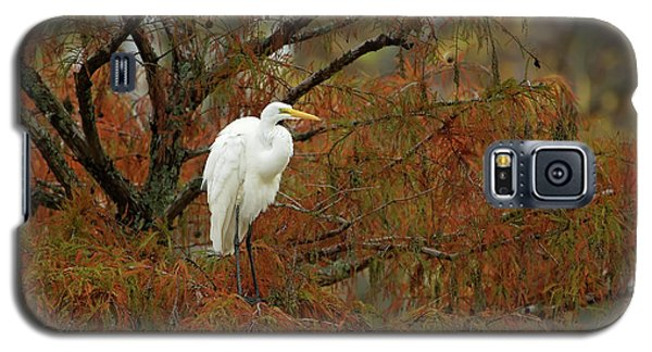 Egret In Autumn Galaxy S5 Case