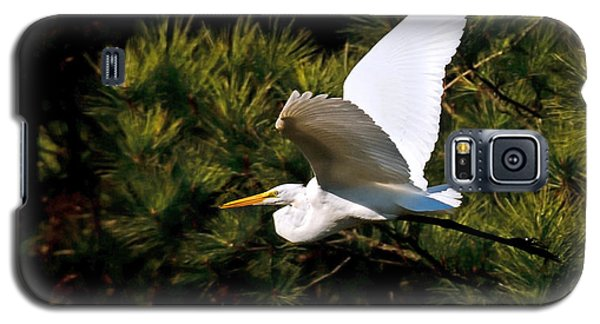 Egret In Flight 1 Galaxy S5 Case