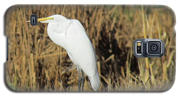 Galaxy S5 Case featuring the photograph Egret In Grass by Bonnie Muir