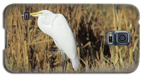 Egret In Grass Galaxy S5 Case