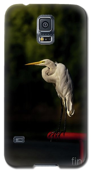Galaxy S5 Case featuring the photograph Egret On Deck Rail by Robert Frederick