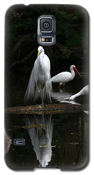 Egret Reflection Galaxy S5 Case