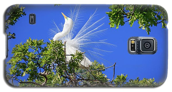 Egret Showing Off Galaxy S5 Case