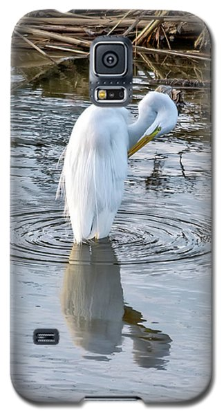 Egret Standing In A Stream Preening Galaxy S5 Case