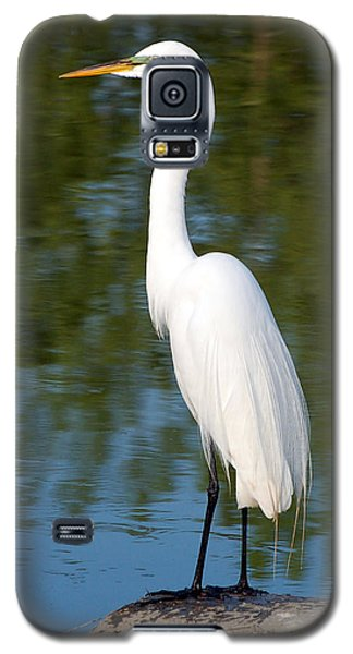 Galaxy S5 Case featuring the photograph Egret Standing by Kathleen Stephens
