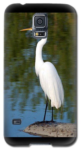 Egret Standing Galaxy S5 Case