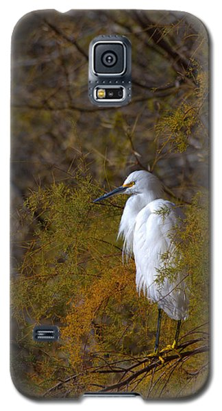 Egret Surrounded By Golden Leaves Galaxy S5 Case