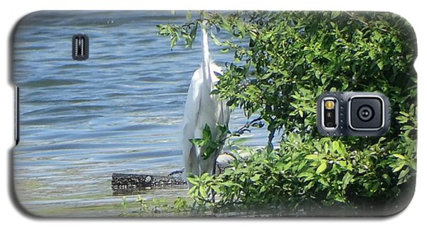 Great Egret In The Marsh Galaxy S5 Case