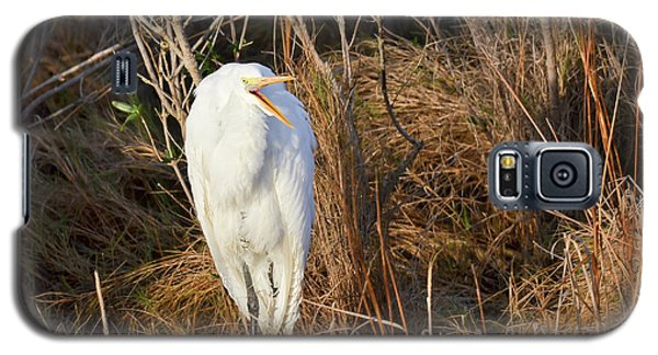 Galaxy S5 Case featuring the photograph Egret With Something To Say by George Randy Bass