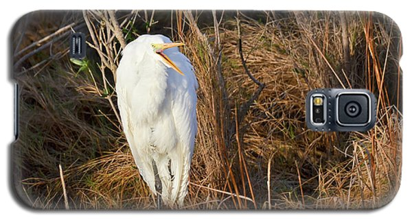 Egret With Something To Say Galaxy S5 Case
