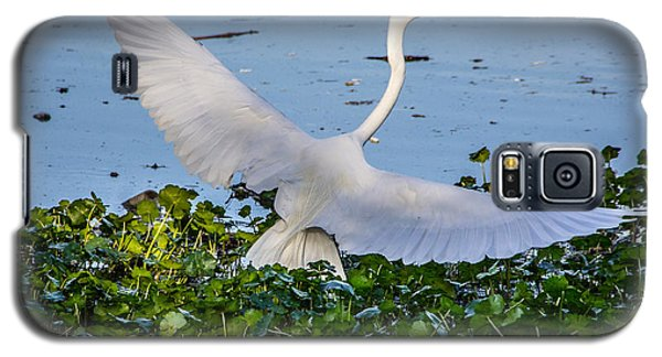 Egret With Wings Spread Galaxy S5 Case