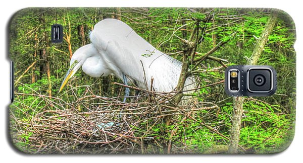 Egrets And Eggs Galaxy S5 Case