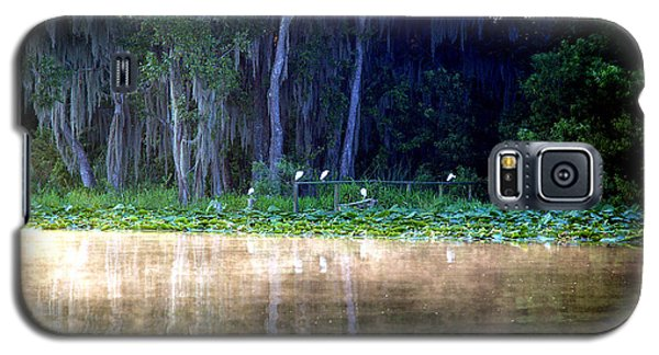 Egrets On A Fence Galaxy S5 Case