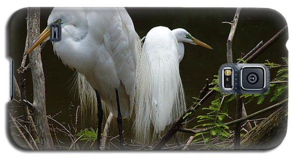 Egrets Galaxy S5 Case