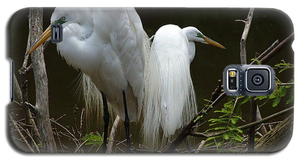 Egrets Galaxy S5 Case