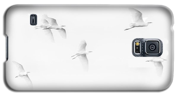 Egrets White On White B/w Galaxy S5 Case
