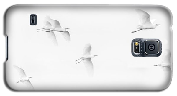 Egrets White On White B/w Galaxy S5 Case