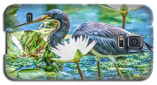 Egretta Tricolor Galaxy S5 Case