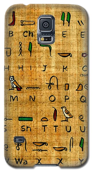Galaxy S5 Case featuring the painting Egyptian Alphabet by Pet Serrano