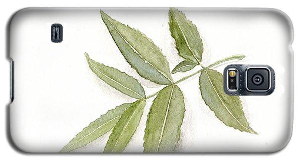 Elderberry Leaf Galaxy S5 Case