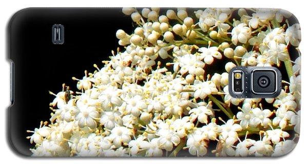 Elderflower Tree Galaxy S5 Case