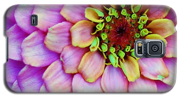 Galaxy S5 Case featuring the photograph Electrifying Zinna by Bruce Bley