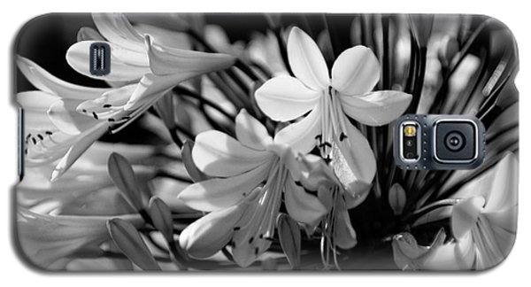 Elegance - Bw Galaxy S5 Case