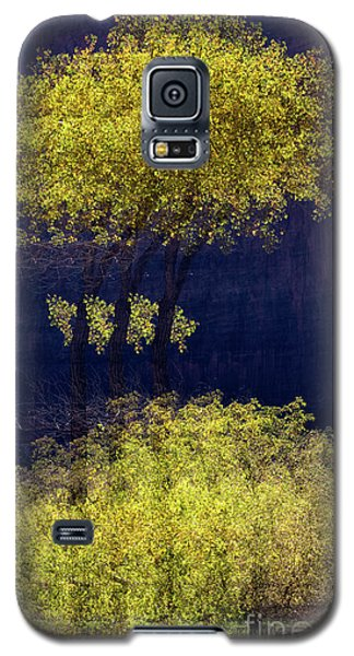 Elegance In The Park Horizontal Adventure Photography By Kaylyn Franks Galaxy S5 Case
