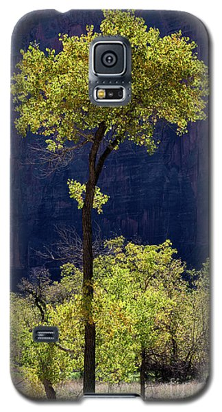 Elegance In The Park Utah Adventure Landscape Photography By Kaylyn Franks Galaxy S5 Case