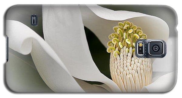 Elegant Magnolia II Galaxy S5 Case