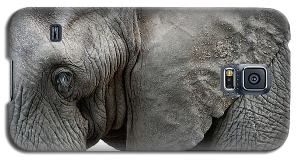 Elephant 2 Galaxy S5 Case