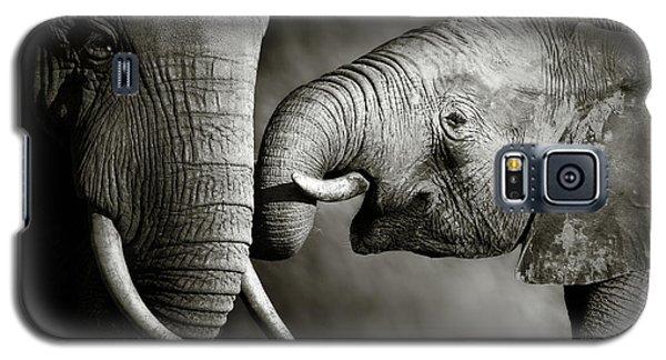 Wildlife Galaxy S5 Case - Elephant Affection by Johan Swanepoel