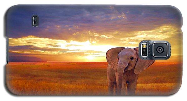 Elephant Baby Galaxy S5 Case