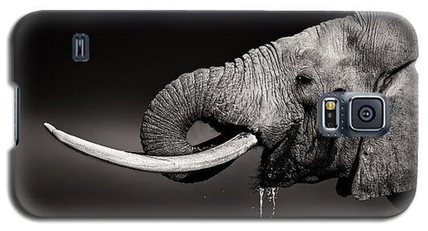 Bull Galaxy S5 Case - Elephant Bull Drinking Water - Duetone by Johan Swanepoel