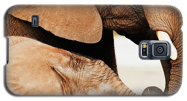 Galaxy S5 Case featuring the photograph Elephant Calf And Mother Close Together by Nick  Biemans