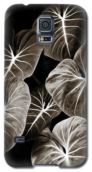 Elephant Ears On Parade Galaxy S5 Case