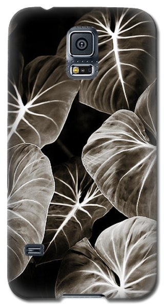 Elephant Ears On Parade Galaxy S5 Case by Marilyn Hunt