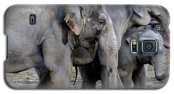 Elephant Family Galaxy S5 Case by Laurel Talabere