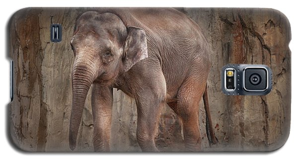 Galaxy S5 Case featuring the photograph Elephant by Jacqui Boonstra
