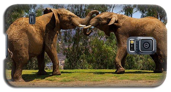 Elephant Play 3 Galaxy S5 Case