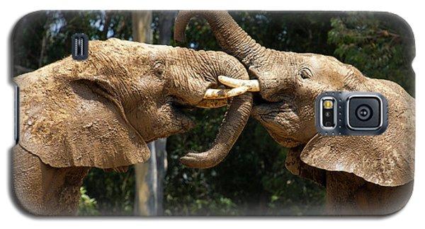 Elephant Play Galaxy S5 Case