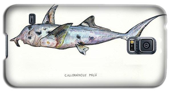 Nurse Shark Galaxy S5 Case - Elephant Shark by Juan Bosco