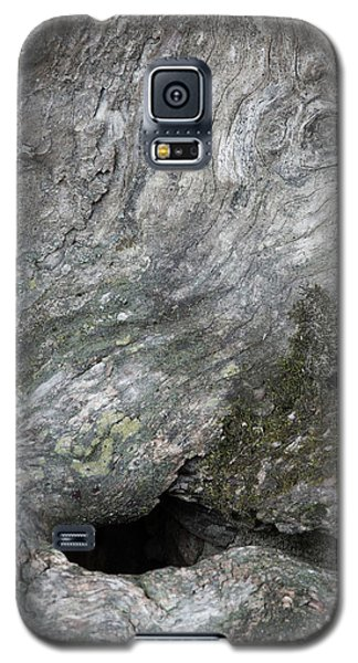 Galaxy S5 Case featuring the photograph Elephant Trunk by Dale Kincaid